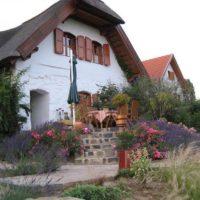 Authentieke wijnboerderij incl eigen zwembad met schitterend panorama omgeving Balatonmeer